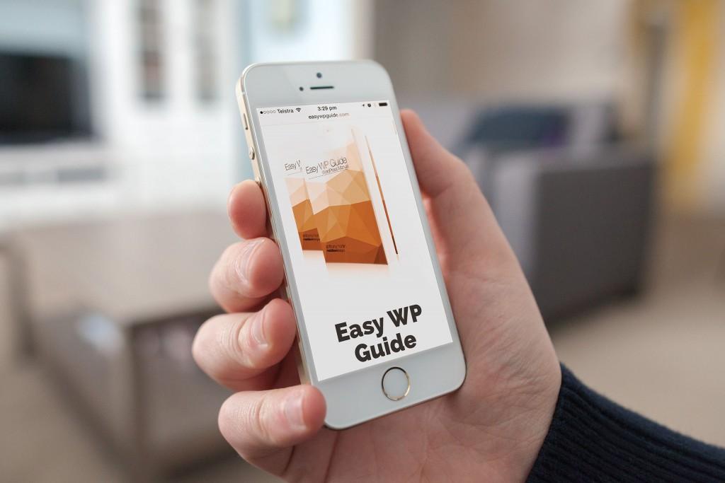 Easy WP Guide portfolio image